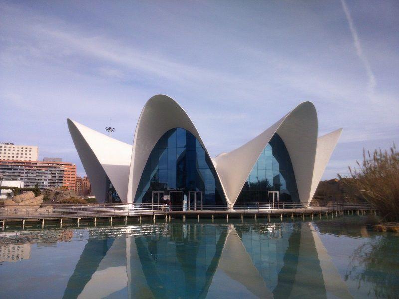 L'OCEANOGRÀFIC, Ciudad de las Artes y las Ciencias valencia