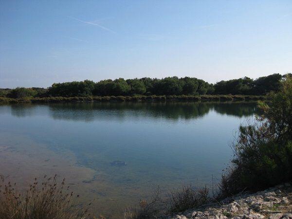 lago parque natural de la albufera