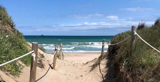 Playas de Pinedo, El Saler y La Devesa