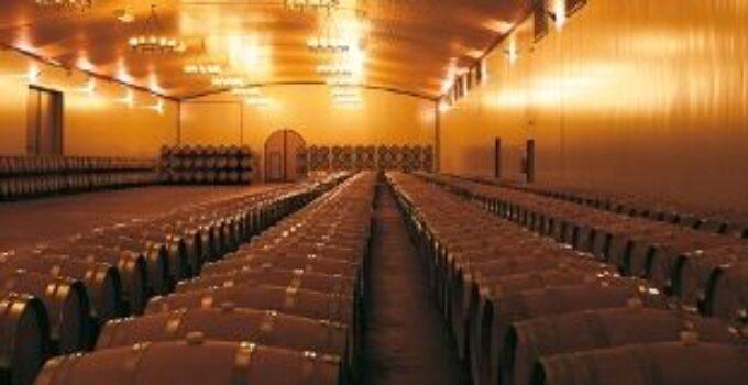 Bodegas Vegamar, los mejores vinos en una tienda en el centro de Valencia