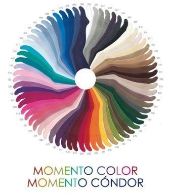 gama de colores condor