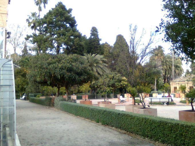jardin botanico valencia