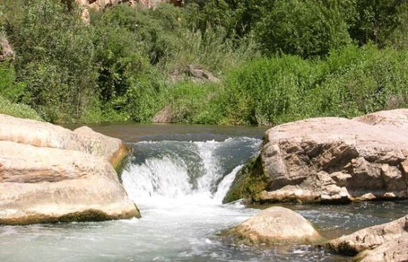 camping altomira parque natural