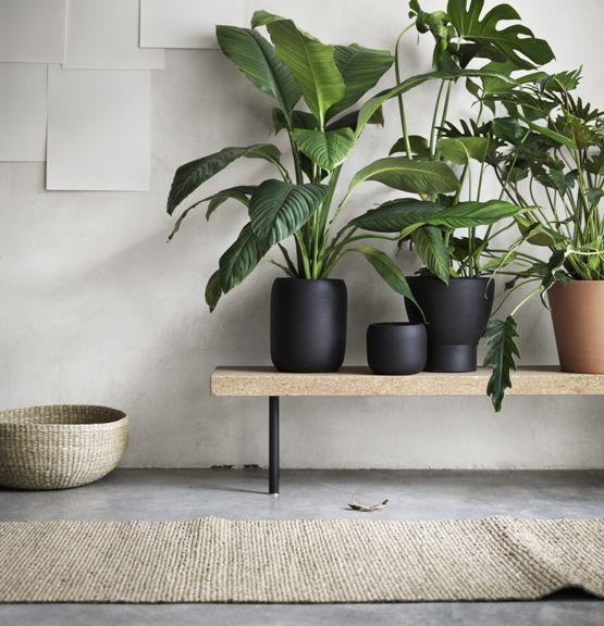 IKEA_Sinnerlig_50_alta