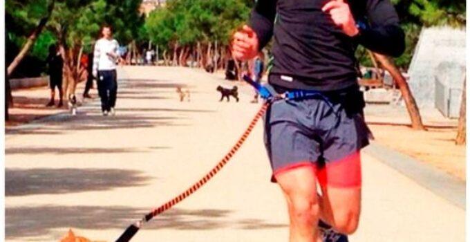 7ª edición del desfile de perros abandonados de AUPA y BIOPARC Valencia