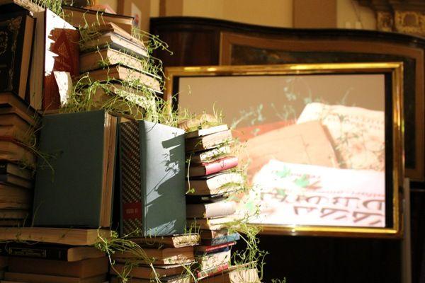 libros-olympia (1)