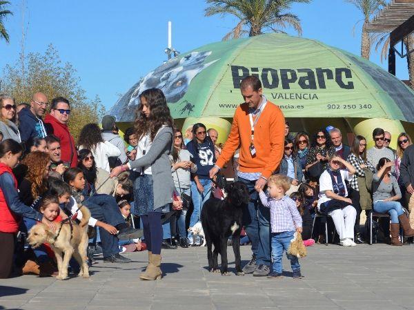 7º desfile AUPA - BIOPARC para fomentar la adopción
