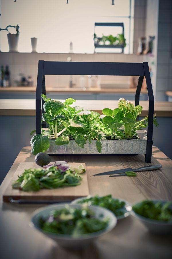ikea-coleccion-indoor-gardening-2016-ph133374-krydda-modulo-jardinera-acero-negro-galvanizado