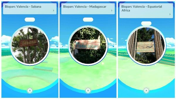 pokemon-go-bioparc-valencia