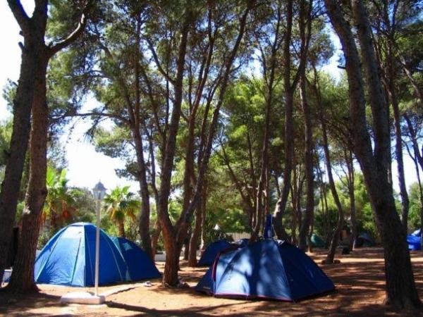camping-pinos-castellon