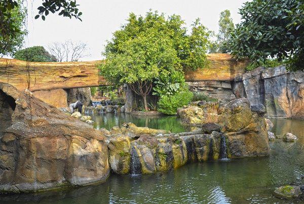 Bioparc, Zoo