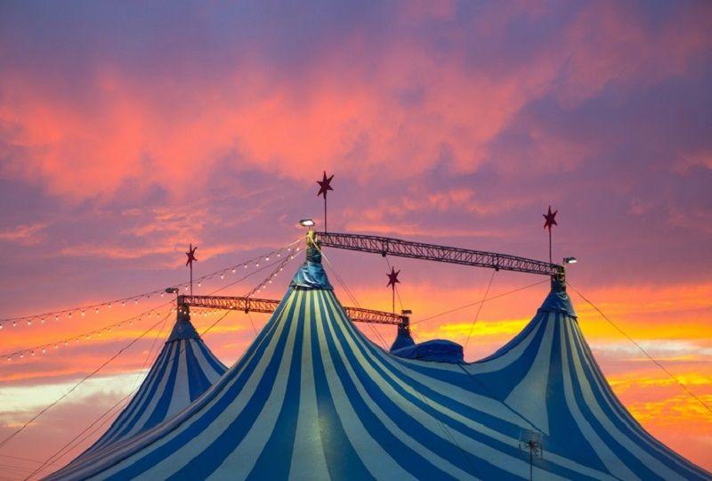 Circ de Nadal, Circo, Circo Alaska, Circo Gran Fele, Circo Wonderland, Navidad 2018
