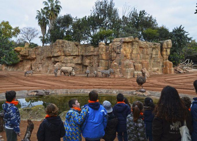 BIOPARC Valencia Expedición África Navidad Escuela de vacaciones