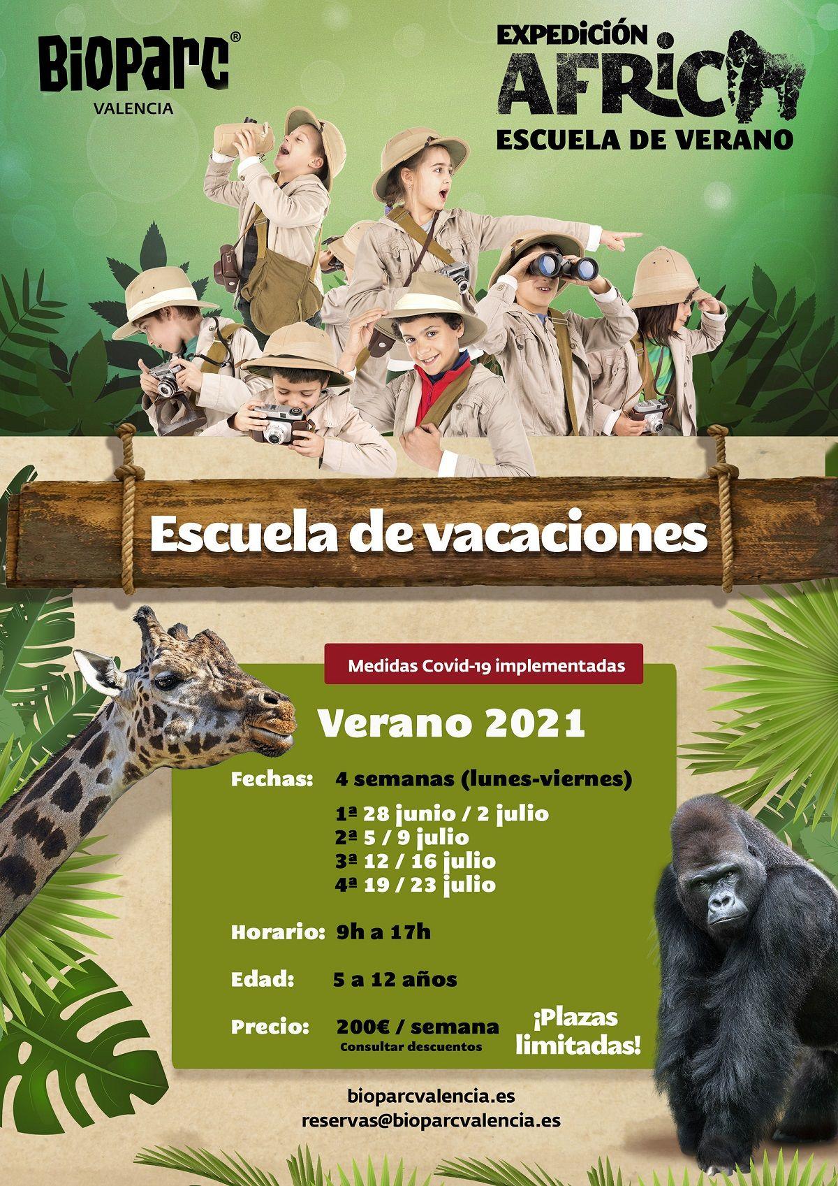 Expedición África: Escuela de verano de Bioparc Valencia valencia