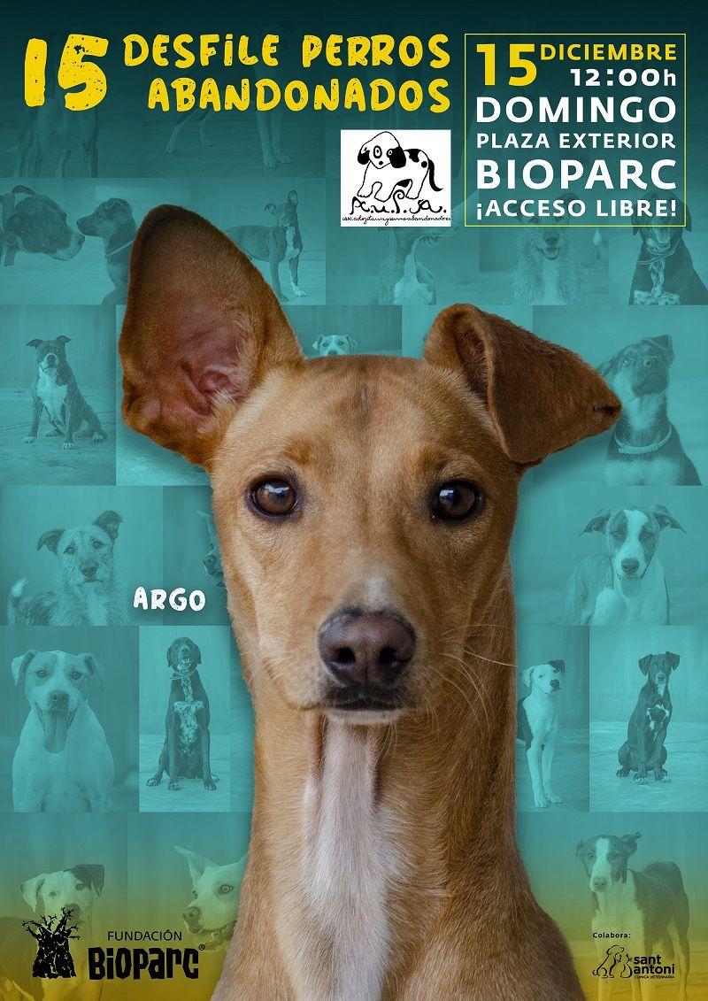 Cartel desfile de perros abandonados AUPA Diciembre