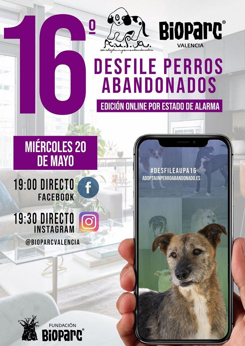 16 desfile perros abandonados AUPA BIOPARC VALENCIA