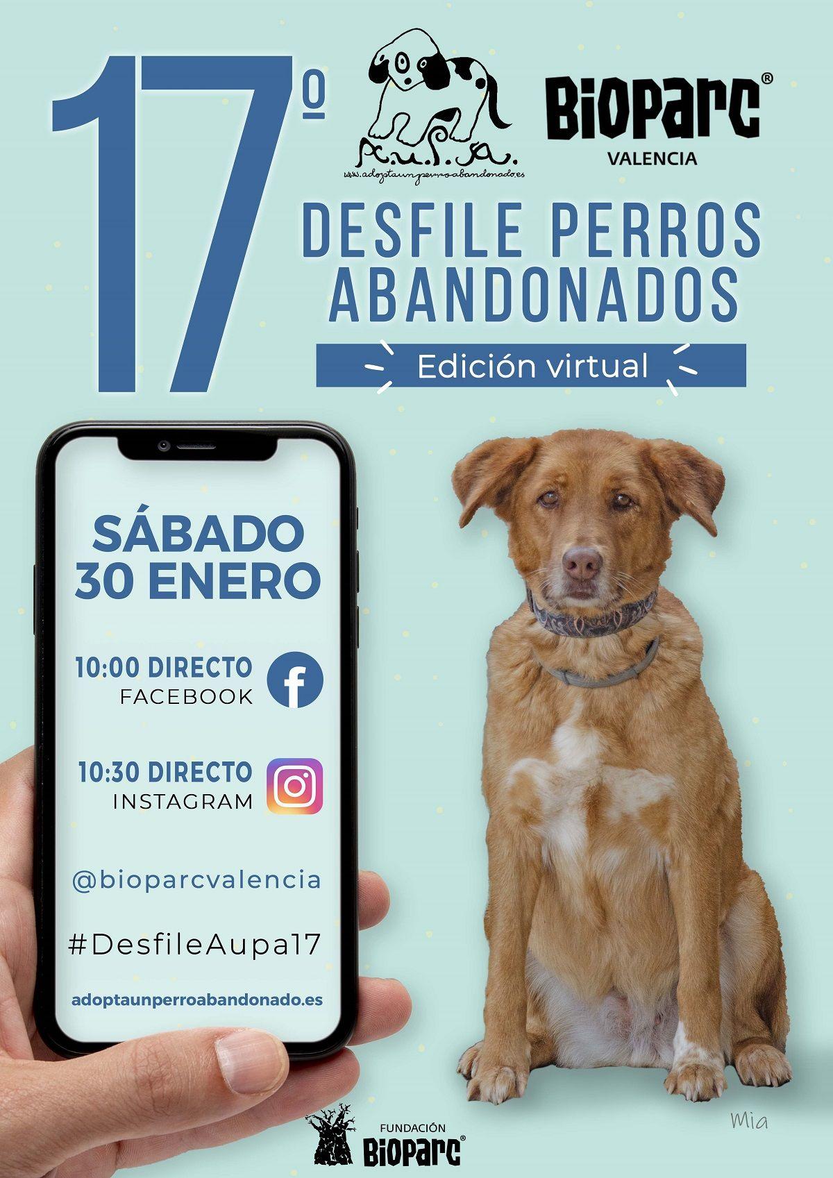 """A.U.P.A y BIOPARC Valencia organizan un desfile """"virtual"""" de perros abandonados valencia"""