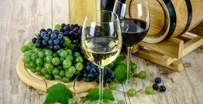 El vino ecológico valenciano que apunta a conquistar España