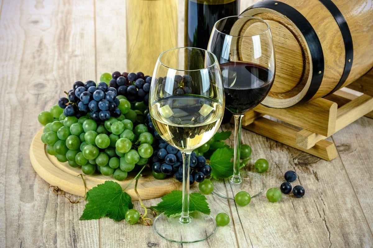 El vino ecológico valenciano que apunta a conquistar España valencia